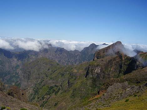 Pico do Ariairo tekstui