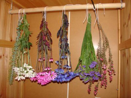 Anonsas lt puo iame namus d iovint g li ir augal kompozicijos - Plantas secas decoracion ...
